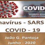 Covid-19 situação atual e perspectivas